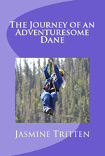 JourneyofAn AdventuresomeDane150