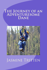 Journey of an Adventuresome Dane200